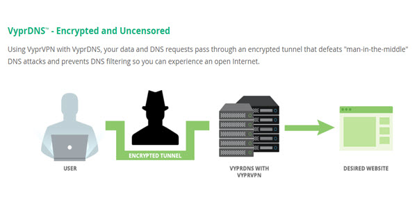 VyprVPN Review DNS
